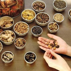 Basic ayurvedic herbs everyone must know about